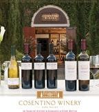 Cosentino Sell Sheet 2013