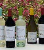 Wine Sisterhood Wine Lineup Garden