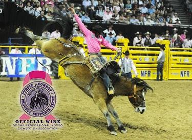 pc horseback w tetwp 375x275